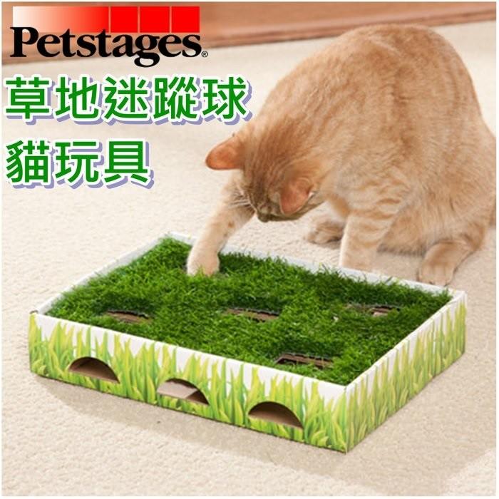 ~Petstages ~708 草地迷蹤球完美結合狩獵遊戲並接觸大自然草皮狩獵貓咪遊戲盒貓