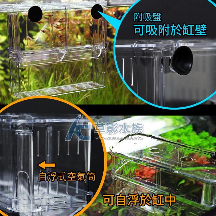 ~AC 草影~MAXX 極限自浮式雙層飼育隔離盒(15cm )~一個~