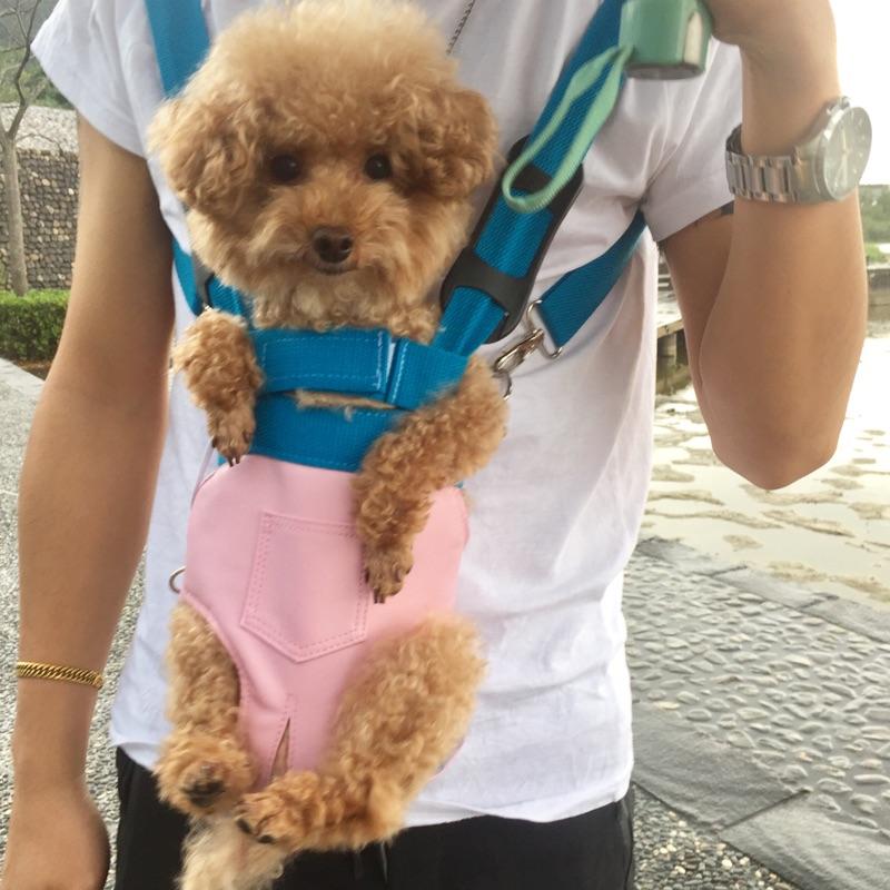 寵物背帶貓狗不卡脖露尾巴外出袋外用