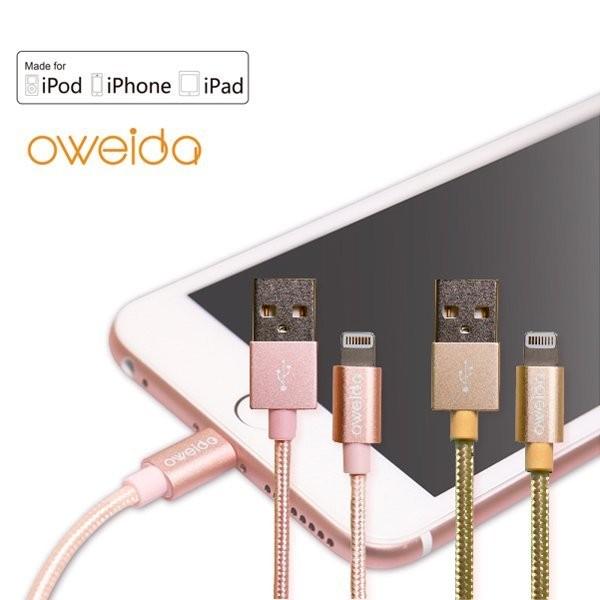 Oweida iPhone 6S 6S Plus 5S SE iPad 18cm MFI