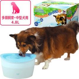 GEX 狗用電動循環飲水器4 8L 中大型犬多狗多貓家庭