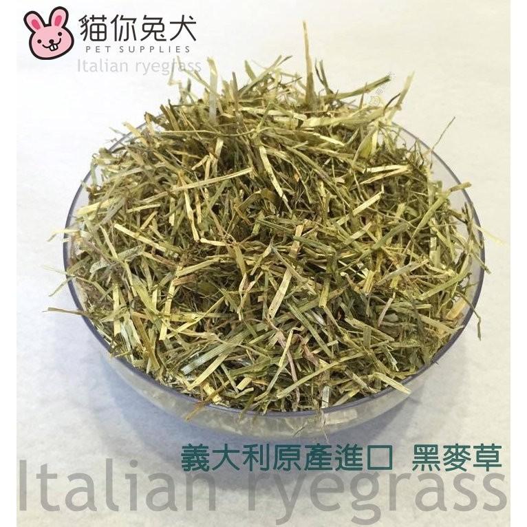 ~貓你兔犬~義大利原產 黃金黑麥草600G 夾鏈袋包裝乾燥劑