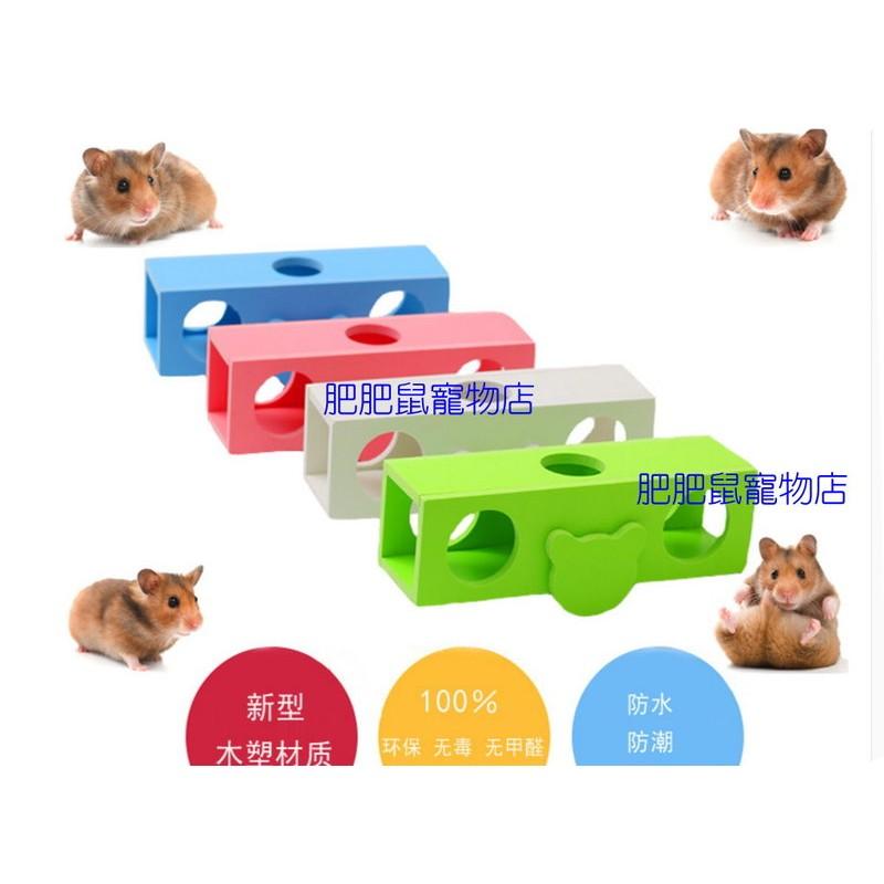 zoog 倉鼠筒狀蹺蹺板生態版木質顏色 出貨
