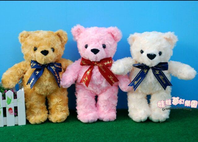可愛玫瑰捲毛泰迪熊高26 公分小熊娃娃毛質超柔軟婚禮小物擺飾全省宅配