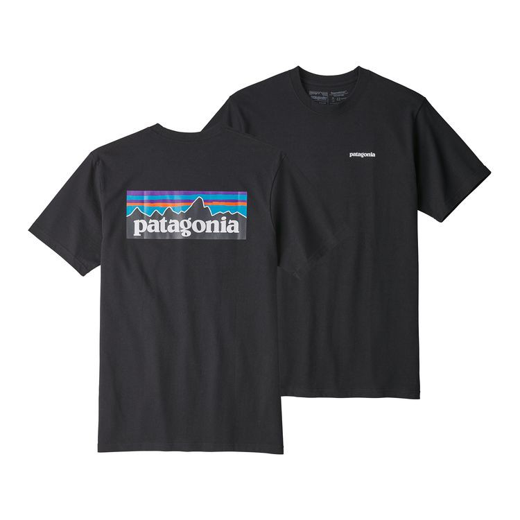 【GROUP A】Patagonia P-6 Logo Organic Cotton 短TEE 街頭 美牌
