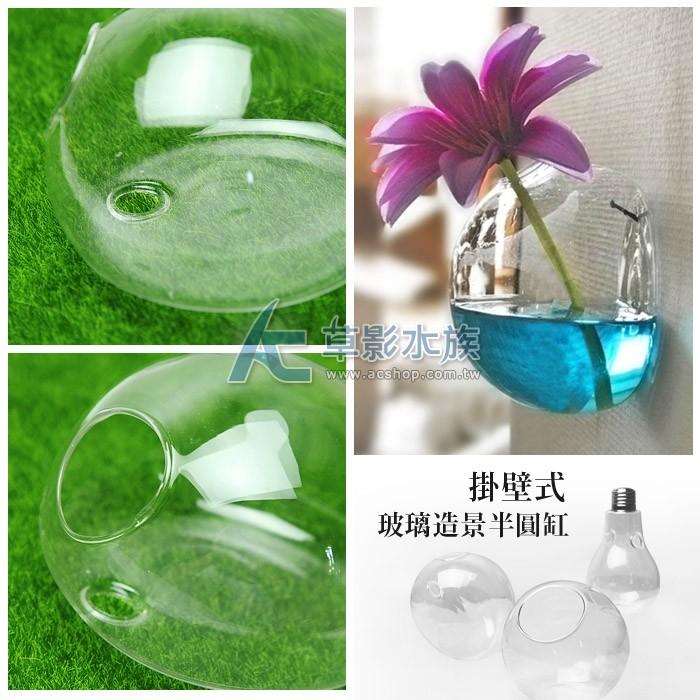 ~AC 草影~掛壁式玻璃造景半圓缸(12cm )~一個~花瓶插花裝飾品佈置裝潢擺飾