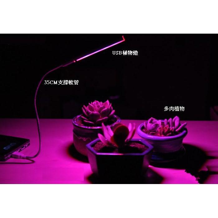 ◤AMO LED ◢USB 植物燈多肉花卉溫室蔬菜蘭花LED 植物生長補光燈