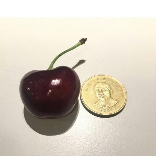 華盛頓櫻桃9ROW 櫻桃 1 公斤650 元【綺綺水果】