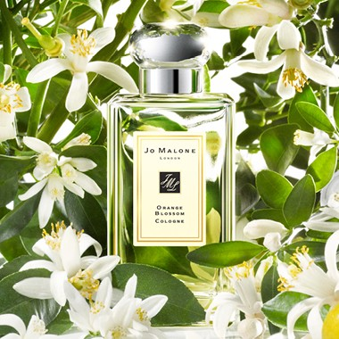 Jo Malone 橙花Orange Blossom 30ml 100ml