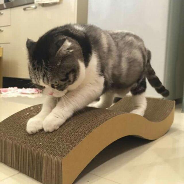 ~喵喵貓抓板小鋪~S 型躺椅