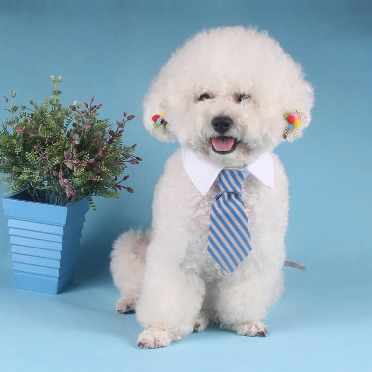 PETSTYLE 寵物領結領帶狗領帶兒童寶寶領帶卡通印花小領帶