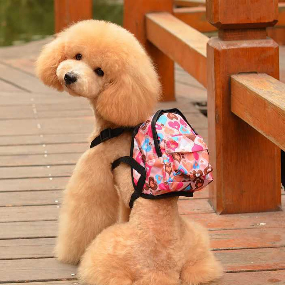 戶外寵物背包狗狗貓咪旅行包外出便攜寵物包狗狗自帶牽引繩背包
