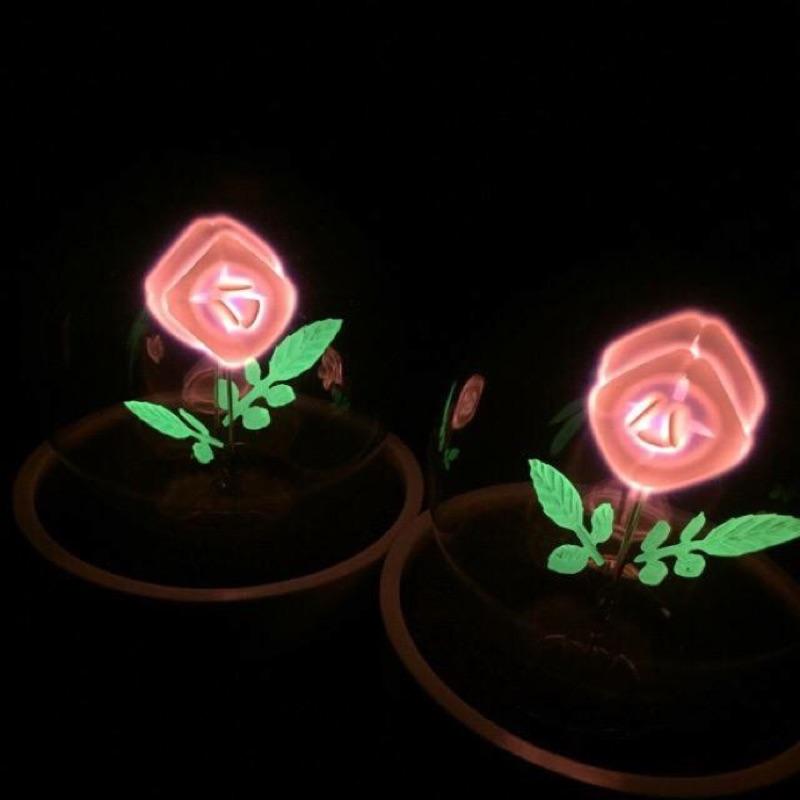 療癒系玫瑰小夜燈
