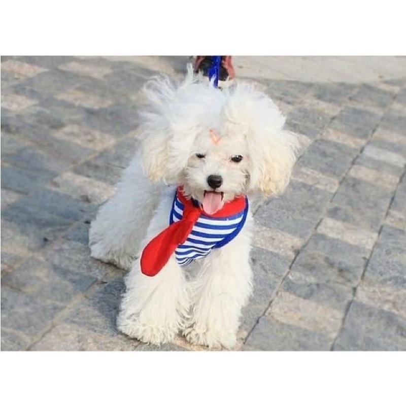 啾咪寵物用品Petstyle 寵物領巾式線條背心式牽繩胸背帶紅藍S M L 附牽繩
