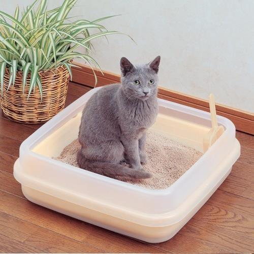 ~幸福培菓寵物~IRIS ~雙層~果凍色貓砂盆CA 400N_ 小