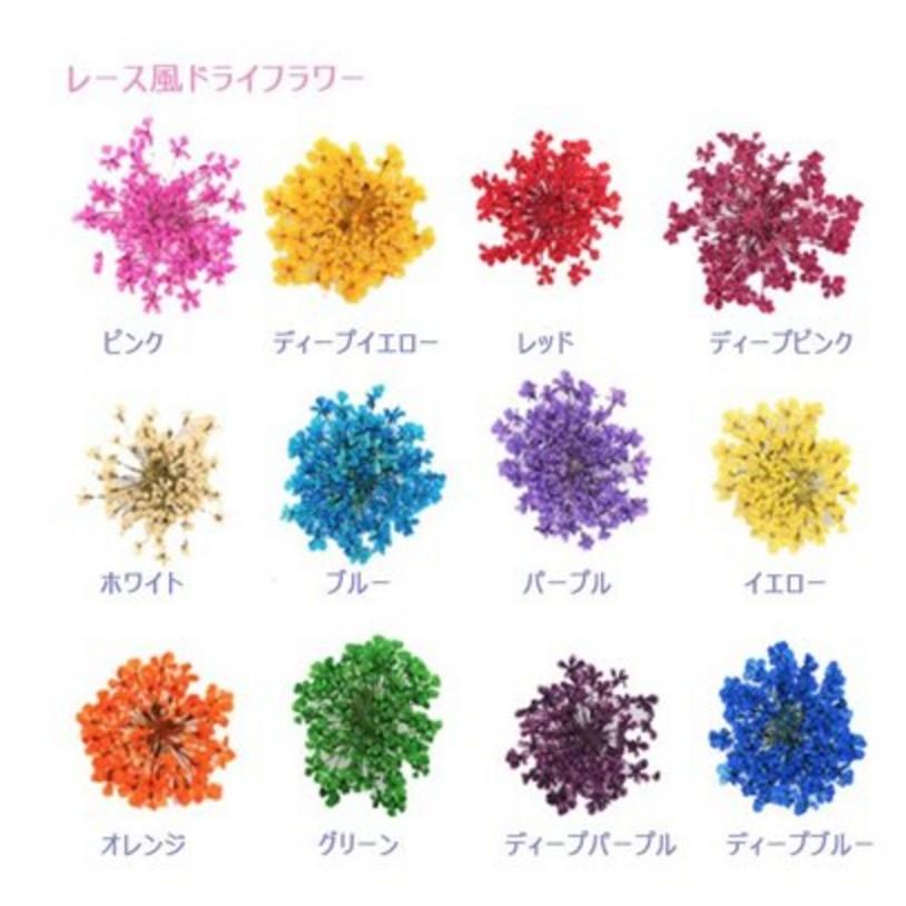 教你玩美甲㊣~X24017X00094 ~春天美甲乾燥花美甲裝飾五瓣花小碎花長條盒裝單盒1