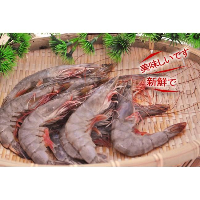 產地 ~新鮮冷凍白蝦40 50 ~隻隻鮮甜美味細嫩彈Q ,料理簡單多變,輕鬆上桌