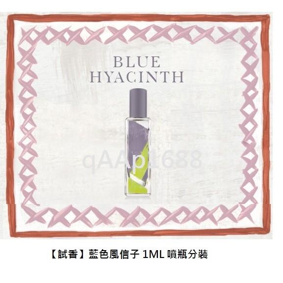 ~ ~The Bloomsbury Set 藍色風信子(Blue Hyacinth )1M