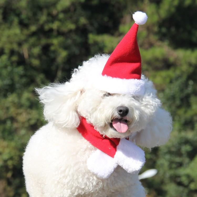id037 寵物聖誕帽圍巾變裝溫暖狗衣服狗帽子狗圍巾寵物用品寵物衣服貓咪