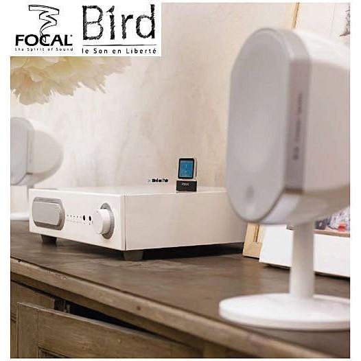 法國Focal little Bird 2 1 系統黑白兩色  貨一年 五台