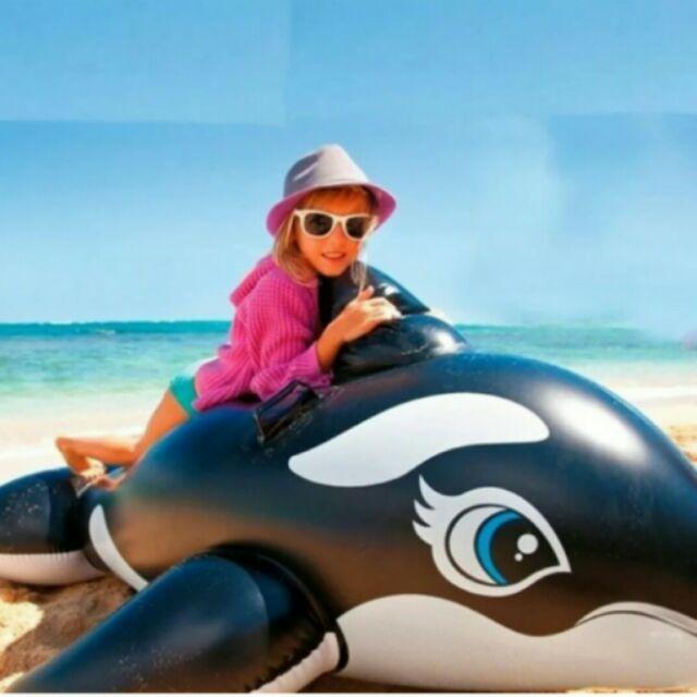 微笑黑鯨魚充氣座騎
