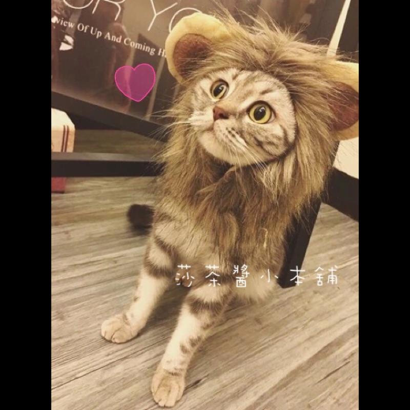 [ ]可愛逗趣搞笑變身獅子王、兔兔、熊貓、綿羊寵物狗狗貓咪 帽子頭套