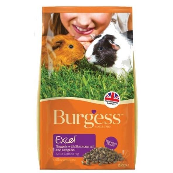 伯爵Burgess 高機能天竺鼠飼料黑莓奧勒岡葉薄荷口味2kg