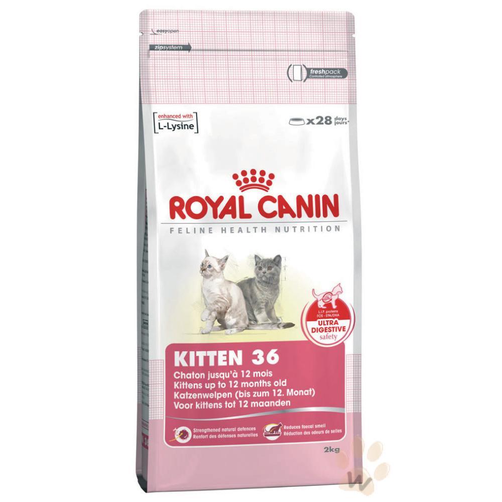 法國皇家K36 幼貓2kg 410 元/4kg 695 元懷孕母貓 飼料