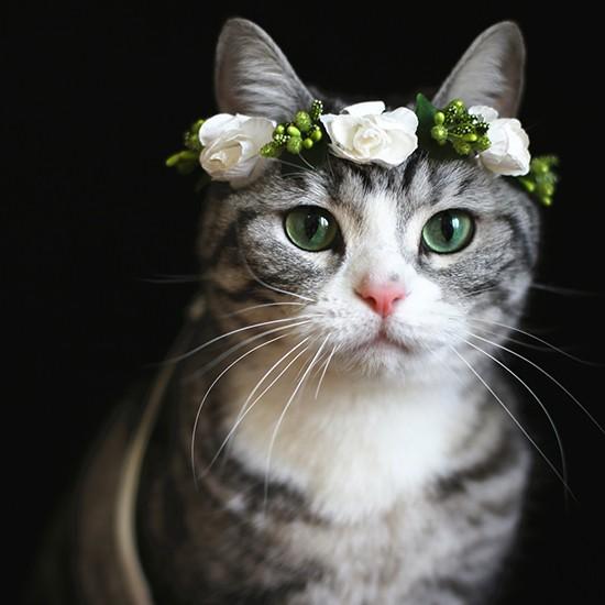 ~小樂寵~秘境淘氣花精靈 仿真花朵項圈多款
