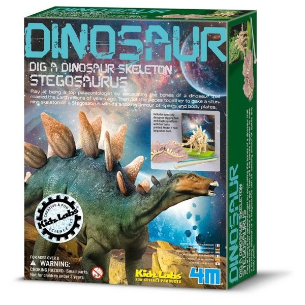 挖掘劍龍Stegosaurus Skeleton 有屋頂的爬蟲類動物侏儸紀時期恐龍Colo