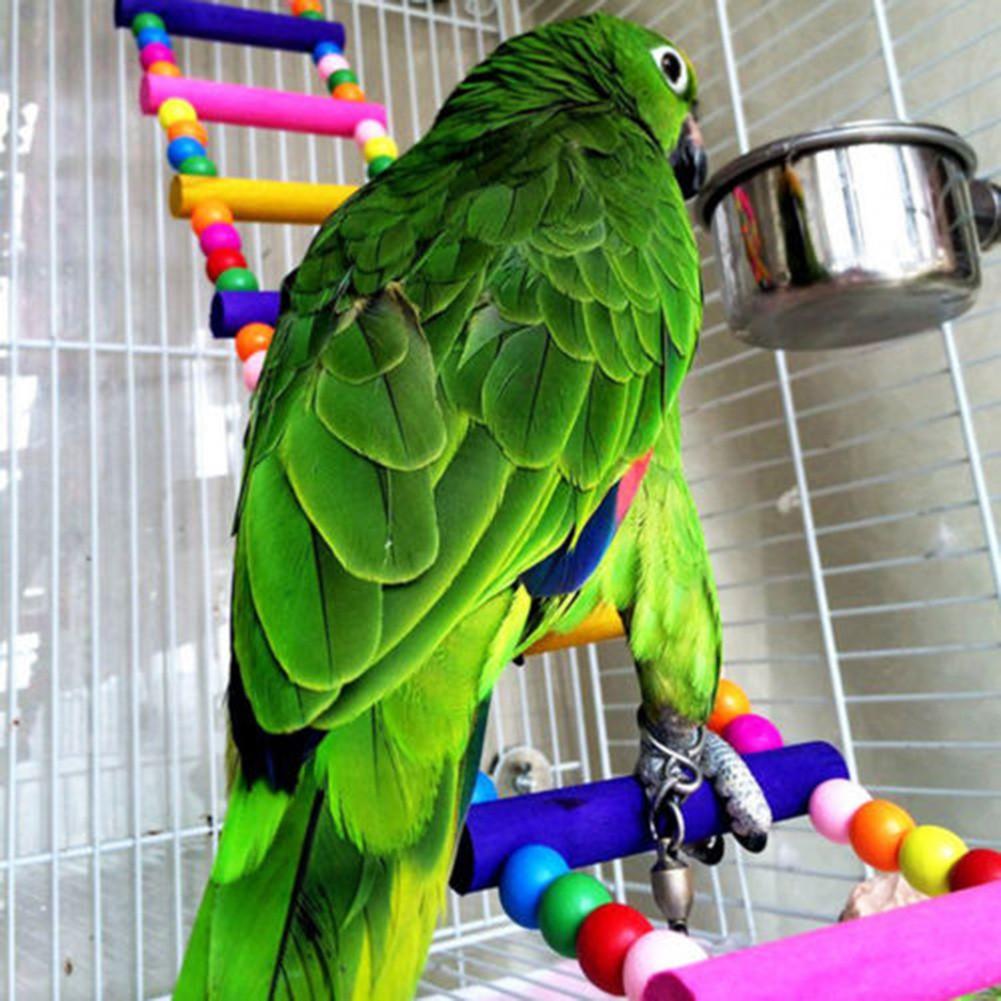 大中小型鸚鵡用品攀爬梯雲梯秋千啃咬玩具鳥籠站架站杠木珠爬梯