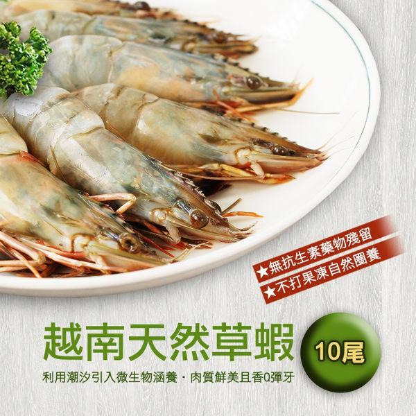 ~築地一番鮮~越南天然大草蝦x3 盒 組10 尾約380g 盒