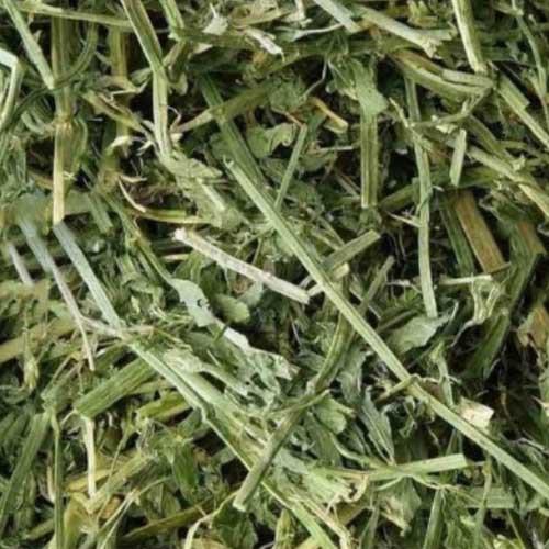 兔子 天竺鼠 天然分裝牧草 苜蓿草 燕麥草  夾鏈袋裝