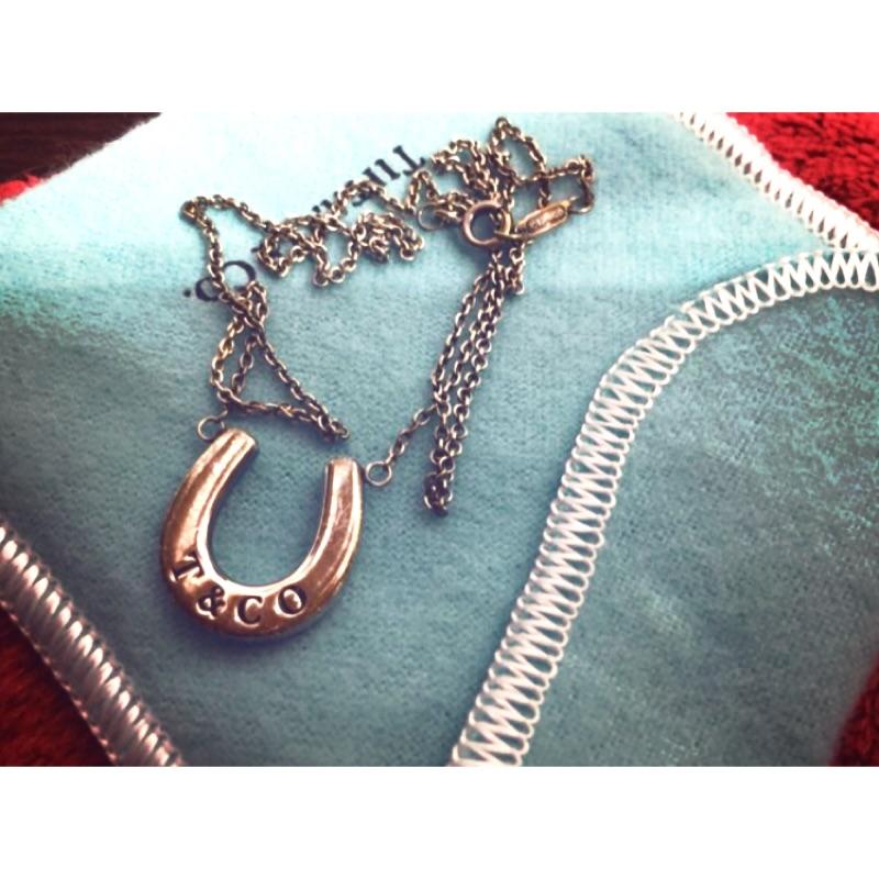 Tiffany 馬蹄二手項鍊正品盒裝完整