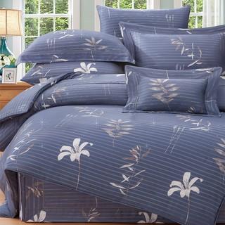 80支頂級雙線銀纖天絲 【雙人 加大 特大組合】規格可選  兩用被床包四件組 七件式鋪棉床罩組 尼菲塔 台中市
