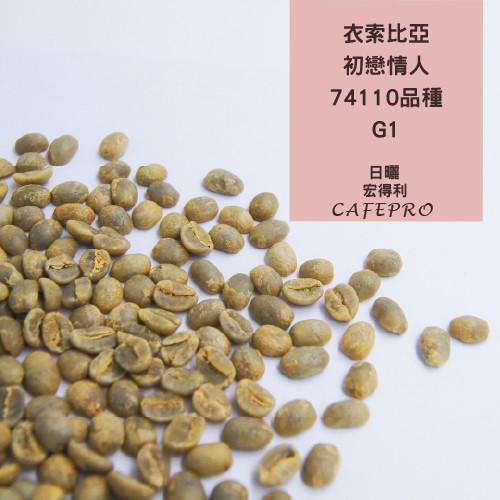 【莊園級生豆限量販售】衣索比亞 初戀情人 74110品種G1 500G