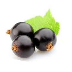<168all>50ml  黑加侖香精/黑醋栗/原食品級2000倍 日本塩野Black Currant FIavour