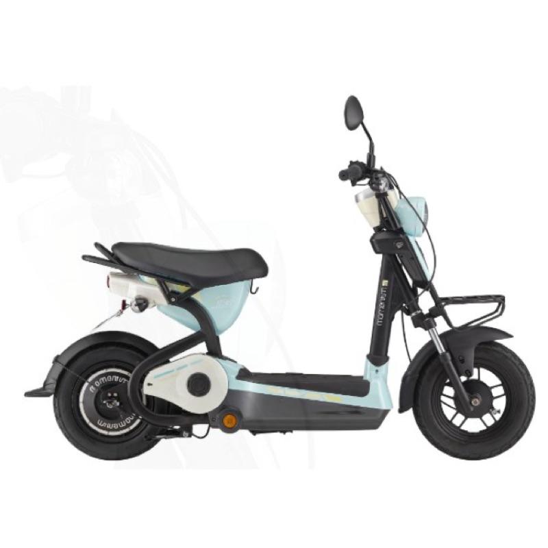 捷安特全新電動自行車EM163