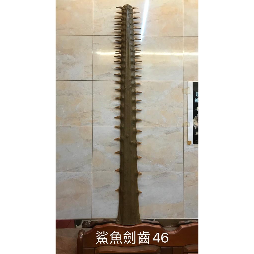 廟宇 陣頭 鯊魚劍 沙魚齒 骨刀 四呎六 法器兵器官將用品 五寶之一 有意者請聊聊