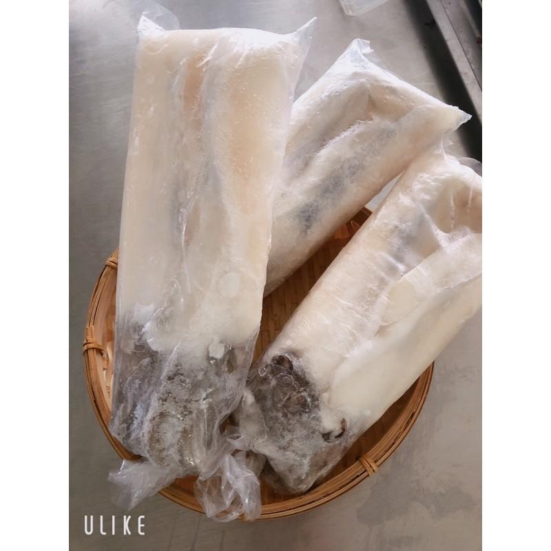 鮮凍花枝 急速冷凍 超新鮮