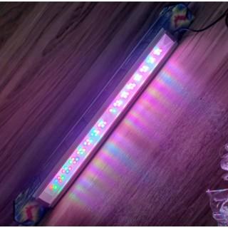 UP 燈具 增艷燈 ET系列 跨燈 多彩的燈《 2尺 限宅配 》 Z 系列紅龍燈 小跨燈 紅燈 增艷燈 5.0 臺南市