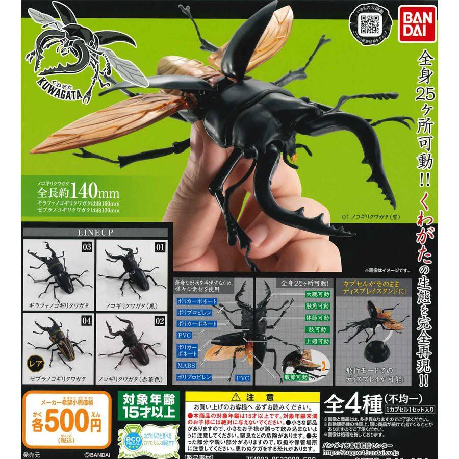 【現貨日空版扭蛋、指定款銷售】BANDAI鍬形蟲-指定款價