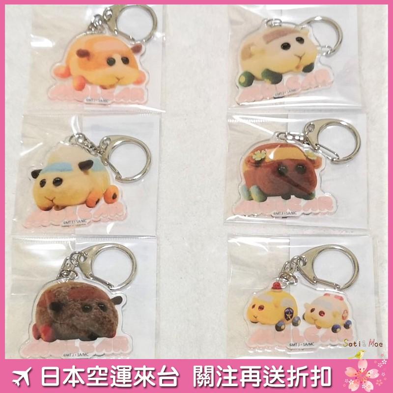 【現貨】天竺鼠車車 鑰匙圈 吊飾 日本空運 正版周邊 puipui
