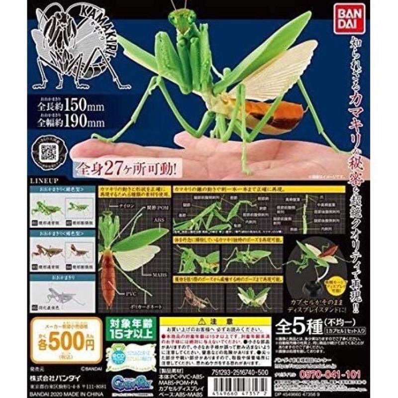 BANDAI 萬代 螳螂 環保扭蛋 昆蟲 扭蛋 可動 鍬形蟲 虎頭蜂