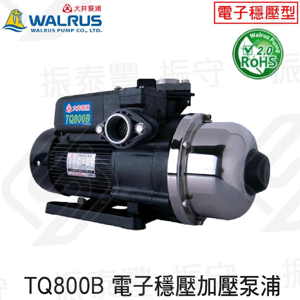 大井 TQ800B 1HP 電子穩壓加壓泵浦 抗菌環保 大井WALRUS 公寓住宅給水 抽水 加壓馬達 原廠保固