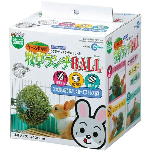 日本Marukan 三用鐵製玩樂牧草球 MR-610  天竺鼠可用