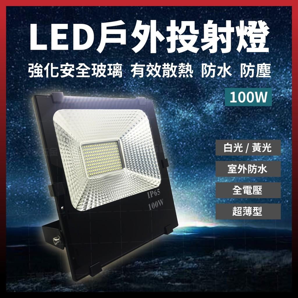 LED 戶外投射燈 100W 探照燈 地燈 防水燈 [天掌五金]