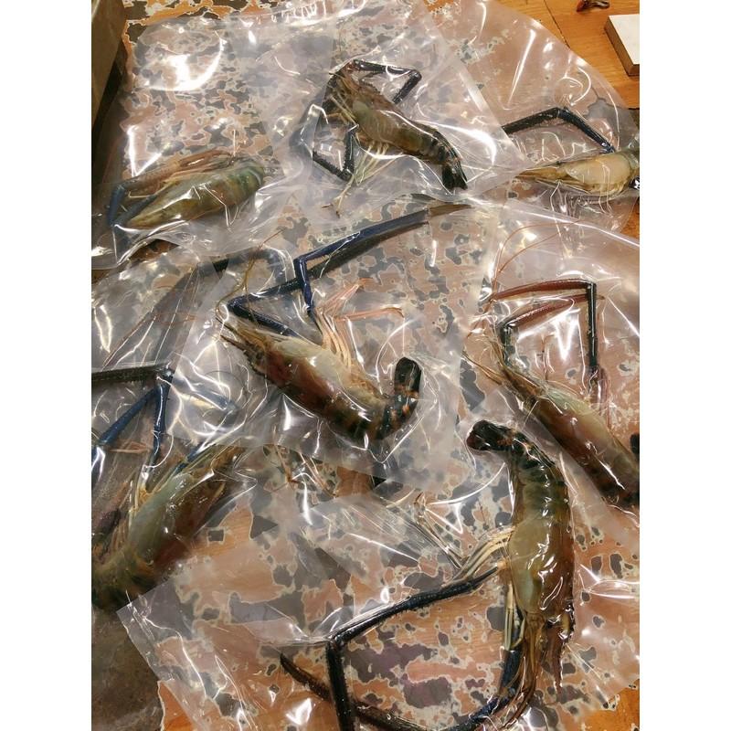 超級大泰國蝦,2.5隻一斤 魚塭現抓、送禮首選、烤肉最佳大小 龍蝦級泰國蝦 獨立包裝 數量不多