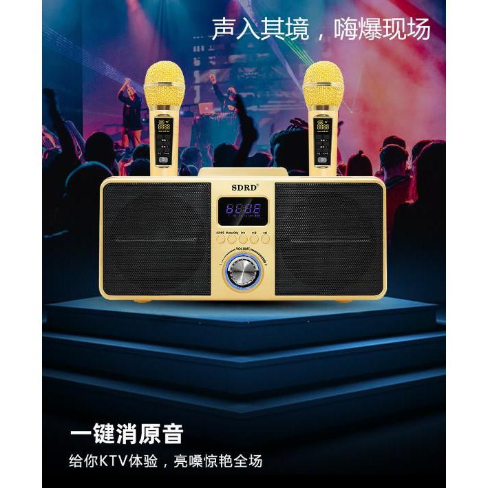 SD-309家庭伴唱KTV SDRD藍芽麥克風 藍牙喇叭《可一鍵消音》雙人合唱