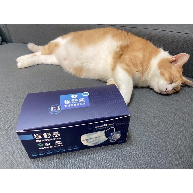 【紫色代購現貨】4D極舒感支撐型防疫口罩(一盒30片)透氣 防悶 快速出貨 貓咪非賣❤️ 大高雄地區可面交